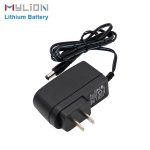 Mylion 12v 18650 lithium ion battery pack wall charger ,12 volt universal solar battery charger ac universal adaptor